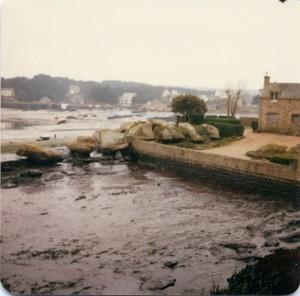Trégastel marée noire (6)