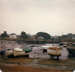 Trégastel marée noire (7)